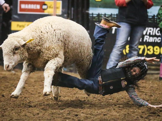 A child falls in mutton busting during the 6th performance