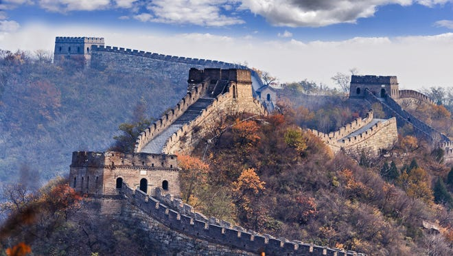 Several towers of Great Wall of Chine near Mutianyu north from Beijing high in mountains at autumn with yellow trees