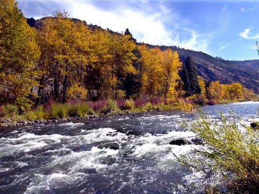truckee river fall beauty.jpg