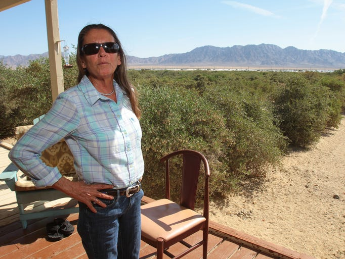Desert Center resident Donna Charpied stands on her porch Thursday, April 24, 2014, and looks across her jojoba farm at the Desert Sunlight solar project adjacent to her property. Charpied and her husband Larry Charpied have lived in Desert Center for 32 years.