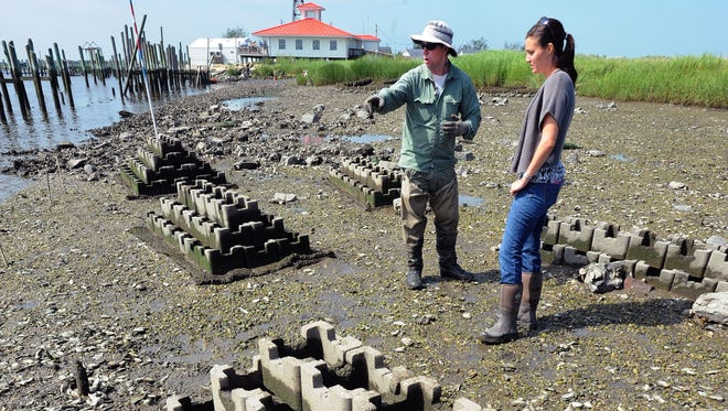 """Josh Moody (left), restoration coordinator for Partnership for Delaware Estuary, explaining idea behind """"oyster castles being placed at Mispillion Harbor to DNREC environmental scientist Alison Rogerson. The Dupont nature center is in background."""