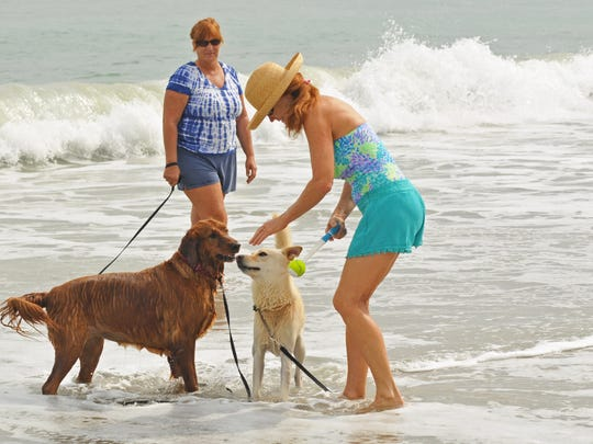 Diane McConnell (wearing hat) plays with Trini the golden retriever and King the yellow husky/Labrador mix last November at the Canova Beach Park dog-friendly beach.