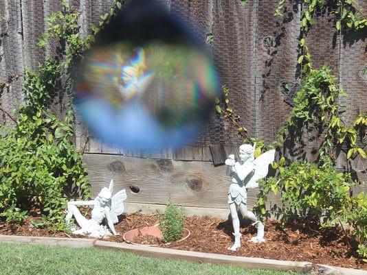 Fairy Dreams by Lenora