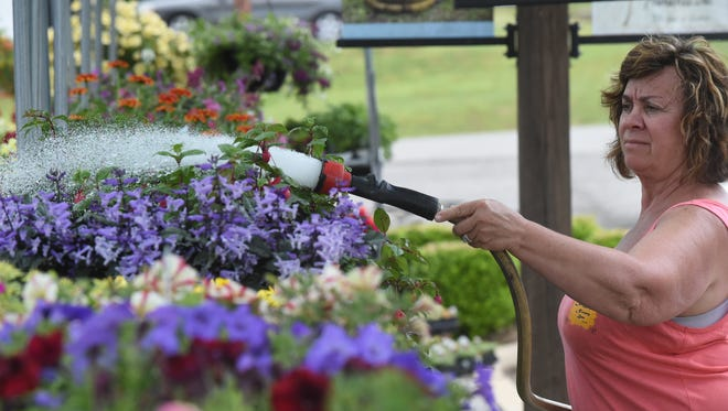 Penne Wooldridge waters flowers at Carl Wayne's Nursery. Wooldridge offers advice for those who are getting ready to plant flowers.