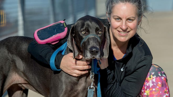 Suzanne Monen Miller of Peoria poses with her 8-year-old Weimaraner, Baxter, while running the Rock Island Greenway in Peoria. Miller was only 40 when she received a surprise diagnosis of colon cancer in 2016.