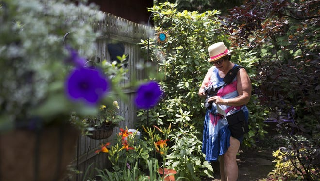 Randi Winterman of Pittsford checks out a picture she just took in a garden during the ABC Streets Neighborhood Garden Walk on Sunday, July 12, 2015.