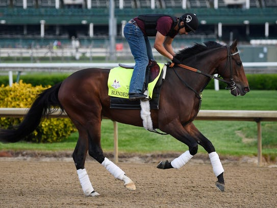 An exercise rider works out Blended Citizen at Churchill
