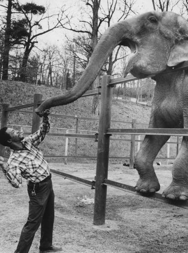 A man plays with Henrietta the Asian elephant at the