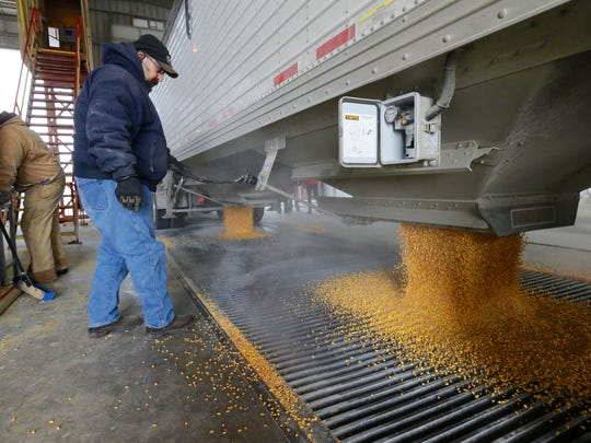 Corn is delivered to the Green Plains ethanol plant in Shenandoah in this file photo.
