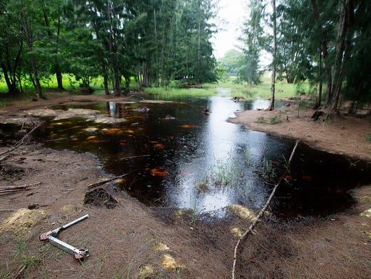 Rain falls on toxic sludge at a site in the Dunbar