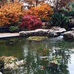 Fall colors at the Dallas Arboretum
