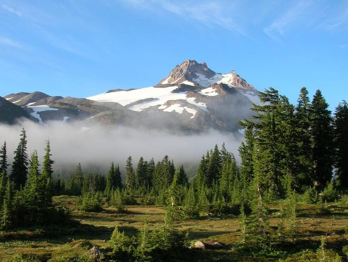 Tree invasion on glacial landforms, Mount Jefferson in the background.