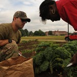 Capt. Scott Church, Squadron Officer School flight commander, left, and Dianna Wilkerson, Carver High School culinary arts teacher, collect kale from Carver's garden on May 16. Church and 25 SOS students not only raised money for gardening supplies, but extended a hand in the construction of the garden for Caver's culinary arts program.