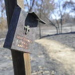 A wild fire burned through the 50-acre Sycamore Trail at Kaweah Oaks Preserve in June.