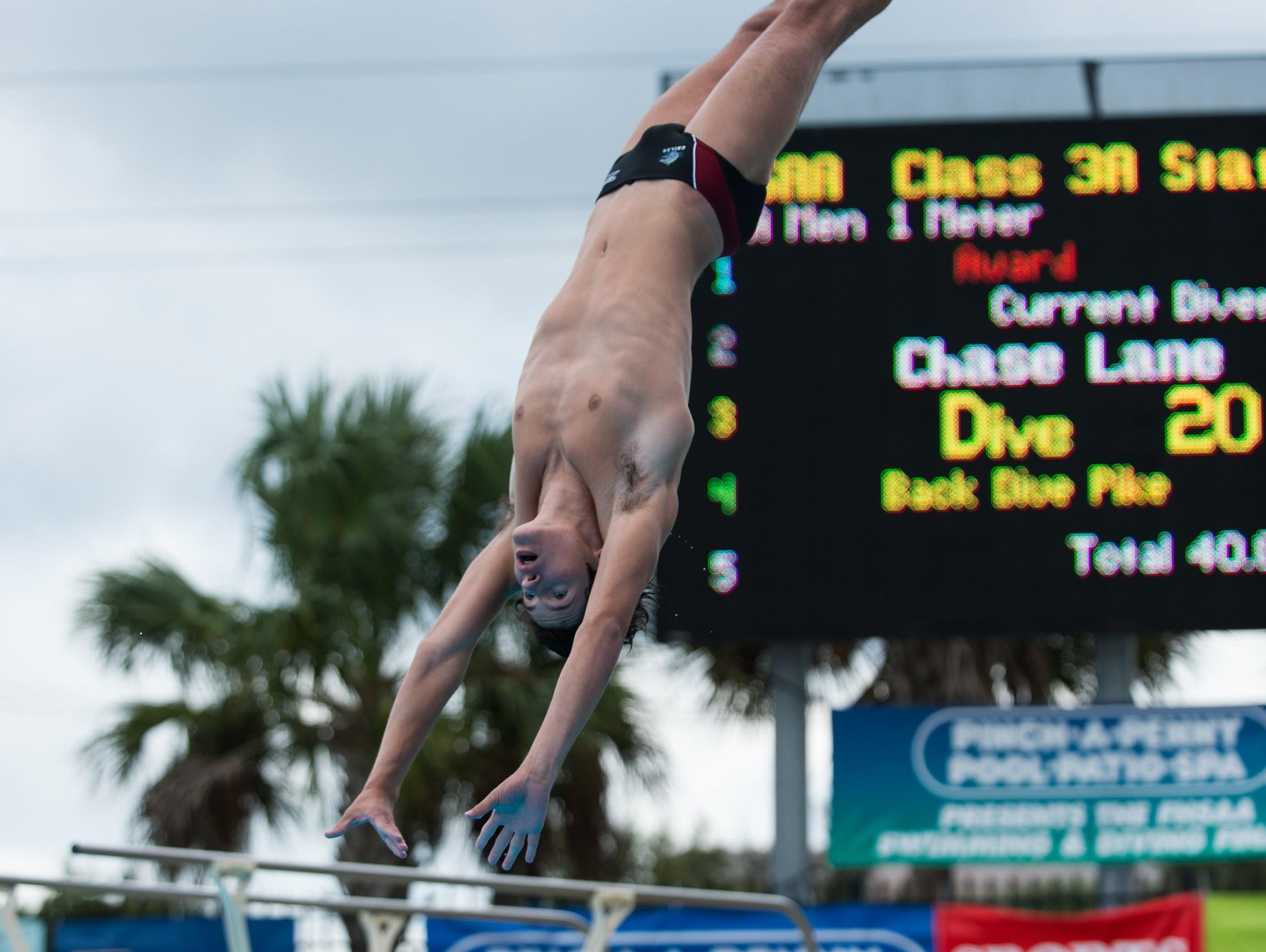 Chiles junior Chase Lane captured a second straight 1-meter diving state title on Friday in Stuart. Lane has only been diving for three years after converting from gymnastics.
