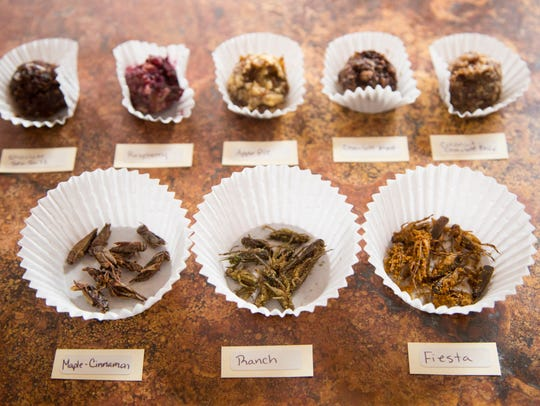 A collection of flavored dry roasted crickets as well