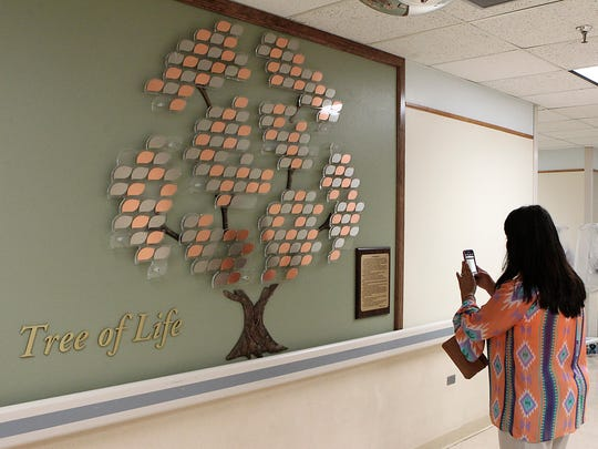 Becky Madrid, mother of Gavino Madrid, takes a cell phone photo of Shannon Medical Center's Tree of Life donor wall on Thursday.