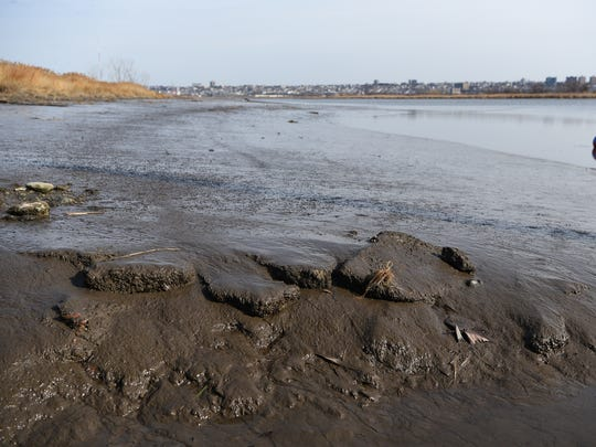 The bank of the Hackensack River seen from River Barge Park in Carlstadt, where samples showed high levels of mercury.