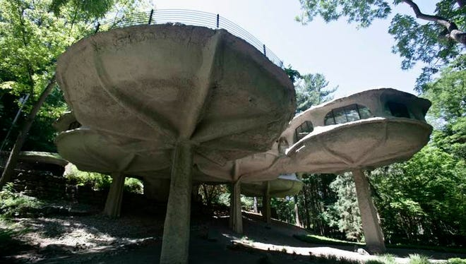 Mushroom House tour goes viral online