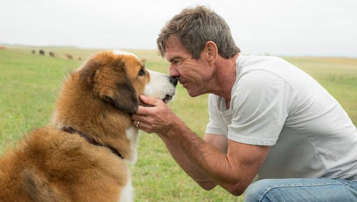 "Dennis Quaid appears with a dog, voiced by Josh Gad, in a scene from ""A Dog's Purpose."" A spokesman for American Humane said Wednesday, Jan. 18, 2017 that it has suspended its safety representative who worked on the set of the film when a frightened German shepherd, not shown, was forced into churning waters."