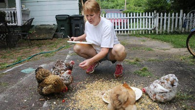 Jenny Durbin feeds chickens in her backyard in Silverton on Wednesday. A change in village law means she has to relocate her flock to a friend's home in Norwood until she can move to a community that allows them.
