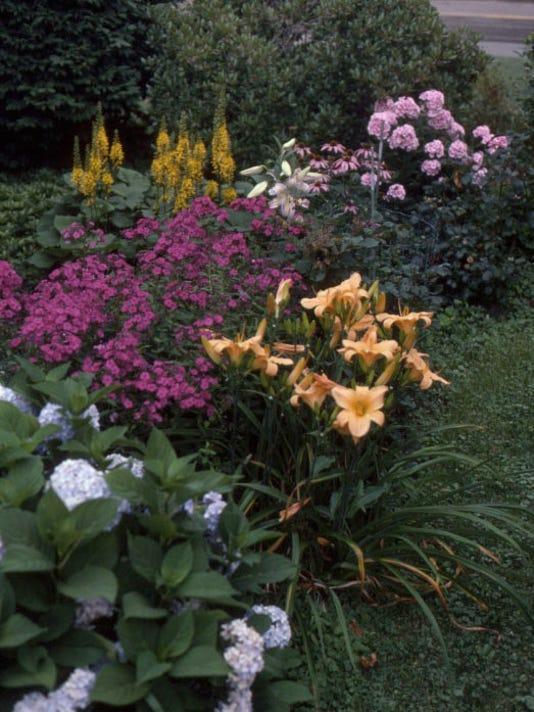 -garden perennials.JPG_20140626.jpg