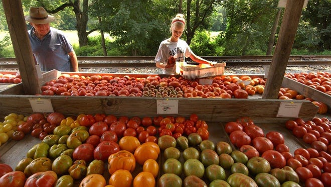 """About 120 families will receive fresh fruits and vegetables through a new program called """"Produce Prescription."""""""