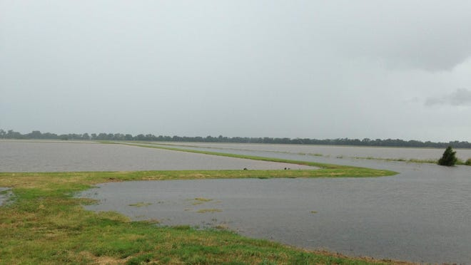 Thousands of acres of farm and pastureland in northern Natchitoches Parish is under water, just one of the spots farmers and ranchers have been hard hit by the flooded Red River.