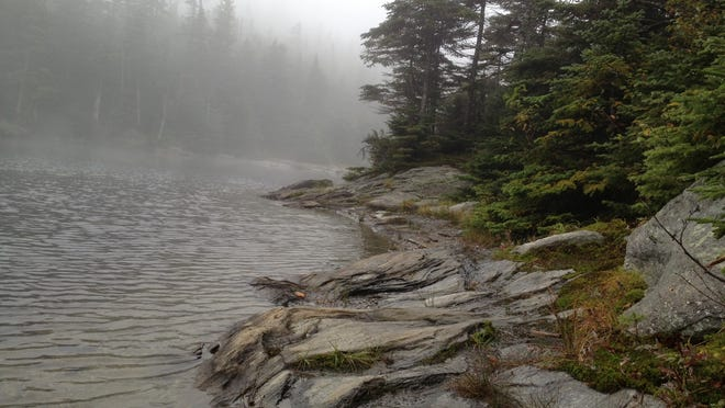 Sterling pond in the mist.