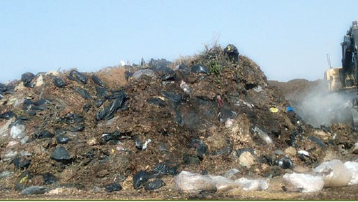 Contaminated yard waste at Outer Loop landfill from before a plastic bag ban.