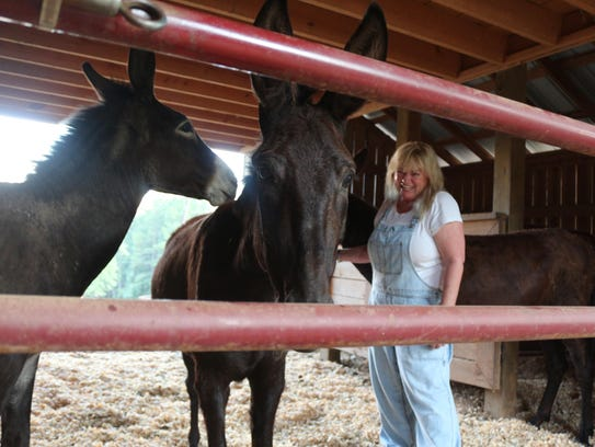 Alisa Lear and three of her rescued donkeys.