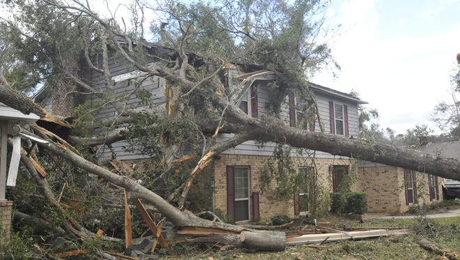 A tree crashed through Chuck and Judi Kicker's home on Northbrook Drive during Tuesday night's storm.