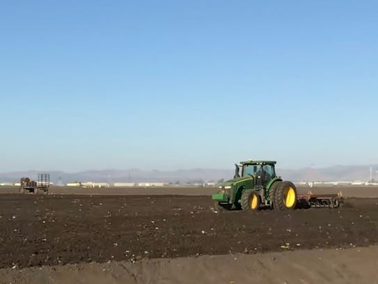 A farm worker drives a tractor on a field outside Salinas.