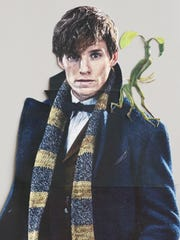 A cutout of Newt Scamander hangs in the Manitowoc Public