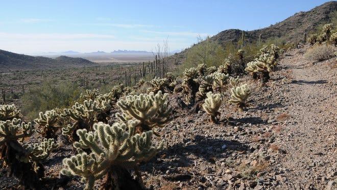 Casa Grande Mountain trails.  Ridge Trail 28