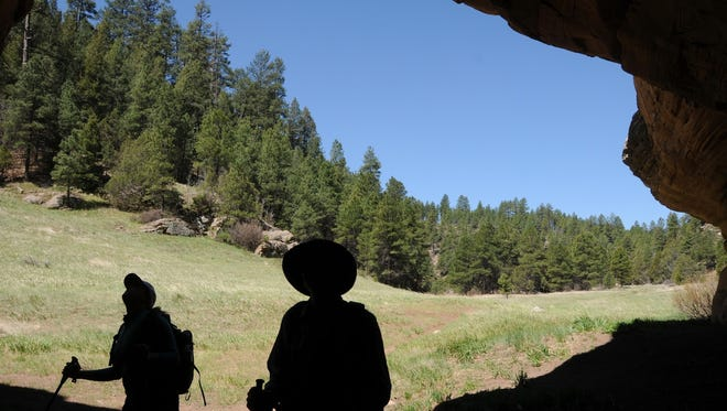 Peering out from a cave in Walnut Canyon near Flagstaff. The hike starts on the Sandys Canyon Trail.