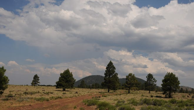 A-1 Mountain is a 300,000-year-old cinder cone north of Flagstaff.