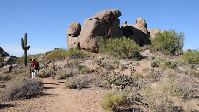 Cathedral Rock in McDowell Sonoran Preserve is a collection of tilted monoliths and jumbled grottoes.