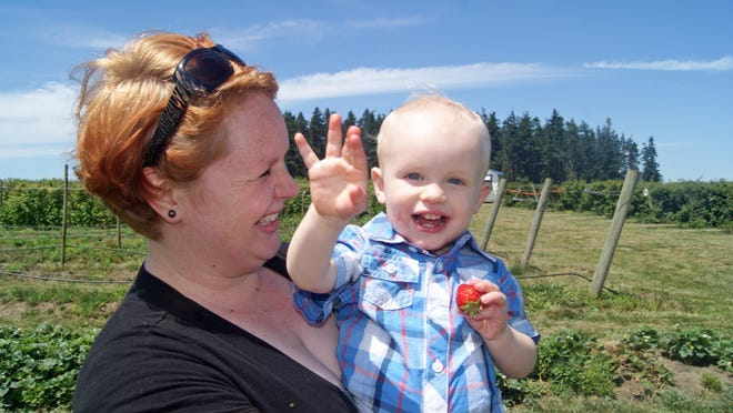 Jessica Short picks strawberries with her son at Willamette Valley Fruit Company.