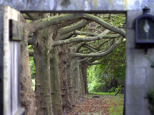 The gateway into Hammond Museum's stroll garden.