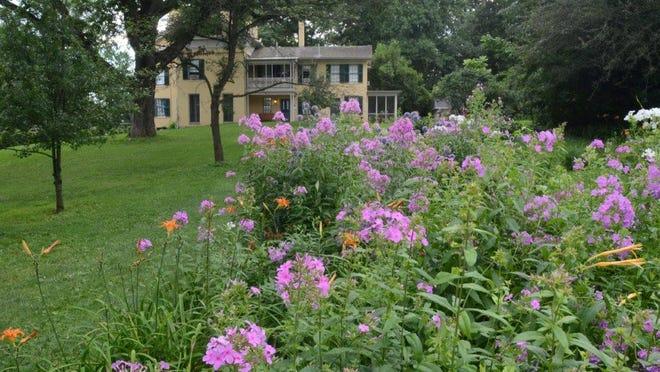 Emily Dickinson's garden.