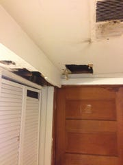 Vents and other areas where bats were found at an Ames apartment.