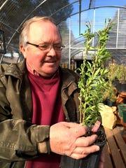Steve Tilleraas, owner of Tilleraas Landscape & Nursery,