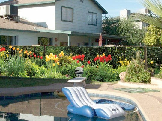 Cindy Hunt picked a field of flowers for her mural in her Mesa backyard.