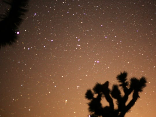 The night sky over Joshua Tree National Park during the Perseid meteor shower.