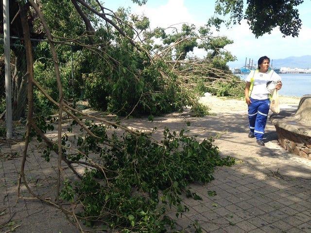 No major damage as Hurricane Patricia remnants move north