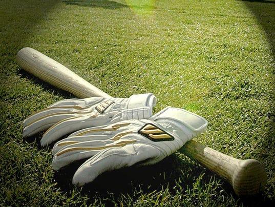 635701577410011871-baseball-bat