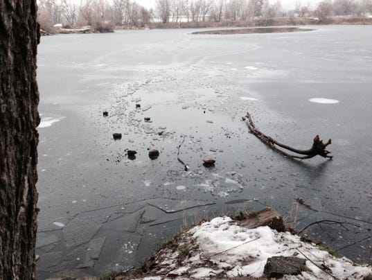 Greenville Dog Rescue Ice