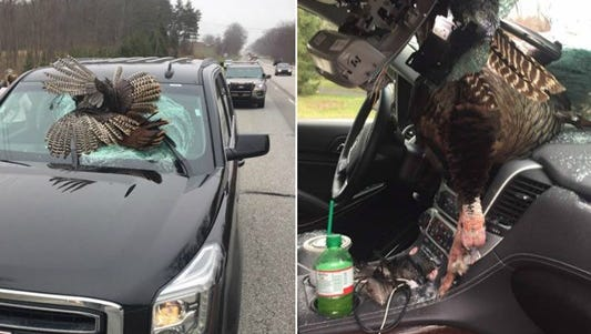 A  30-pound turkey crashed though the windshield of a New Jersey family visiting Notre Dame University in northern Indiana.