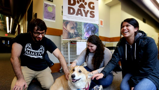 Carlos Luevanos, from left, a sophomore computer science major, Malorie Hill, a junior politics major, and Maribel Carrazco Padilla, a sophomore sociology major, pet Griffin, the corgi of Karen Holman, a chemistry professor, at Willamette University in Salem on Tuesday, Dec. 8, 2015. The Dog Days of Willamette event allows students to relax with dogs before taking final exams all week.